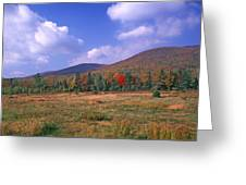 Near Peacham Vermont Greeting Card