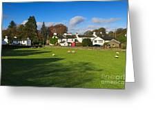 Near Sawrey In The Lake District Greeting Card