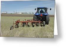 Nebraska Wheat Field Greeting Card