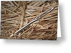 Needle In A Haystack Greeting Card by Tom Mc Nemar