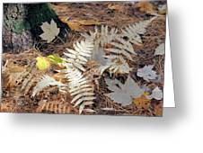 Needles And Leaves Greeting Card