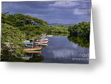 Negril River Greeting Card