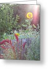 Neighboring Gardeners Greeting Card