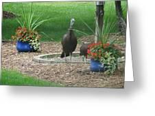 Neighbors Flower Garden Greeting Card