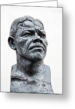 Nelson Mandela Statue Greeting Card by Jane Rix