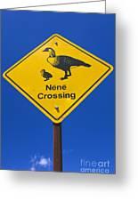 Nene Crossing Sign Haleakala National Park Greeting Card