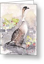 Nene -hawaiian Goose Greeting Card