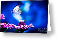 Neon Butterfly Greeting Card