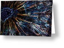 Neon Dandelion Greeting Card