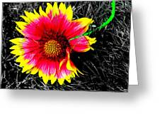 Neon Flowers  Greeting Card