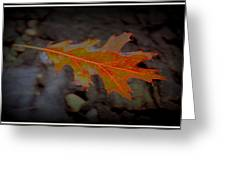 Neon Leaf Afloat Greeting Card by Greg Thiemeyer