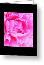 Neon Pink Peony Greeting Card