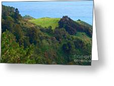 Nepenthe View At Big Sur In California Greeting Card
