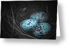 Nest Of 3  Greeting Card