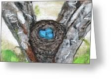 Nest Of Robin Eggs Greeting Card