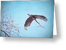 Nesting Heron Greeting Card