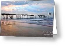 Nesting On Broken Dreams - Outer Banks Greeting Card