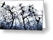Chaos Is Nesting Greeting Card by John Grace