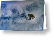 Nettlesphere Greeting Card