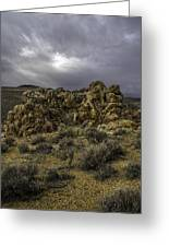 Nevada Desert Skies Greeting Card