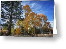 Nevada Fall Colors Greeting Card