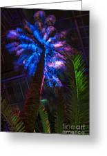 New Age Tropical Palm Greeting Card