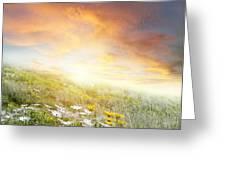 New Day Dawn Greeting Card