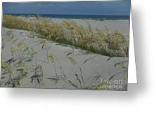 New Dunes On The Atlantic Greeting Card