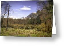 New England Wetland Greeting Card