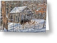 New England Winter Woods Greeting Card