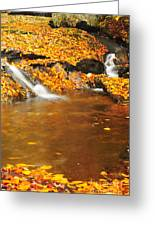 New Hampshire Stream Greeting Card by Catherine Reusch Daley