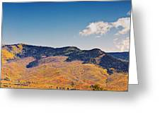 New Mexico Panorama Greeting Card