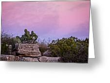 New Mexico Sunset With Cacti Greeting Card