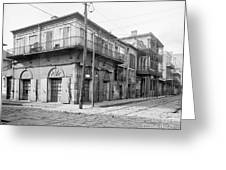 New Orleans: Bar, C1905 Greeting Card