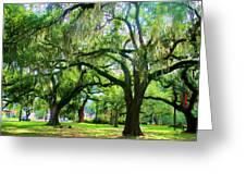 New Orleans City Park - Live Oak Greeting Card