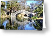 New Orleans City Park Greeting Card