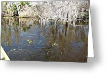 New Orleans - Swamp Boat Ride - 1212104 Greeting Card