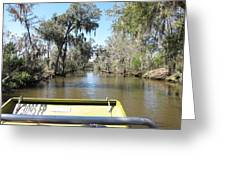 New Orleans - Swamp Boat Ride - 1212122 Greeting Card