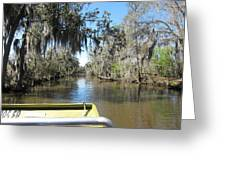 New Orleans - Swamp Boat Ride - 1212123 Greeting Card
