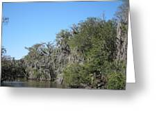 New Orleans - Swamp Boat Ride - 1212130 Greeting Card