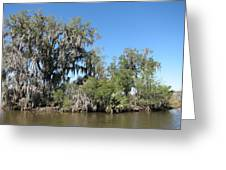New Orleans - Swamp Boat Ride - 1212132 Greeting Card