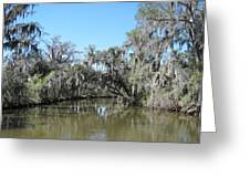 New Orleans - Swamp Boat Ride - 1212133 Greeting Card