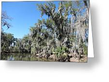 New Orleans - Swamp Boat Ride - 1212135 Greeting Card