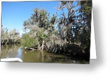 New Orleans - Swamp Boat Ride - 1212141 Greeting Card