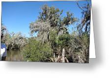 New Orleans - Swamp Boat Ride - 1212144 Greeting Card