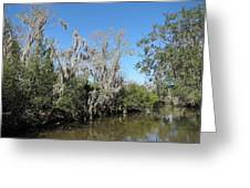 New Orleans - Swamp Boat Ride - 1212146 Greeting Card