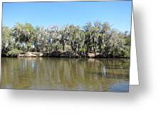 New Orleans - Swamp Boat Ride - 1212150 Greeting Card