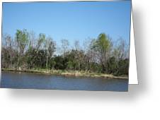 New Orleans - Swamp Boat Ride - 1212161 Greeting Card