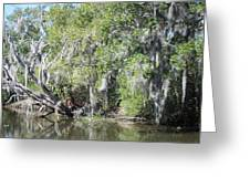 New Orleans - Swamp Boat Ride - 121231 Greeting Card