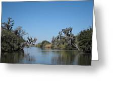 New Orleans - Swamp Boat Ride - 121245 Greeting Card